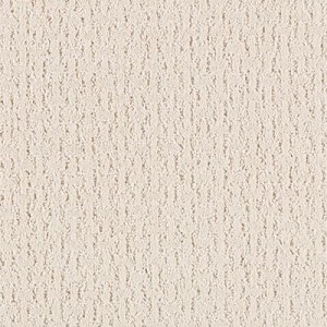 Horizon Carpet Calm Reflection Bare Essence | Orange County Carpet Installation Company