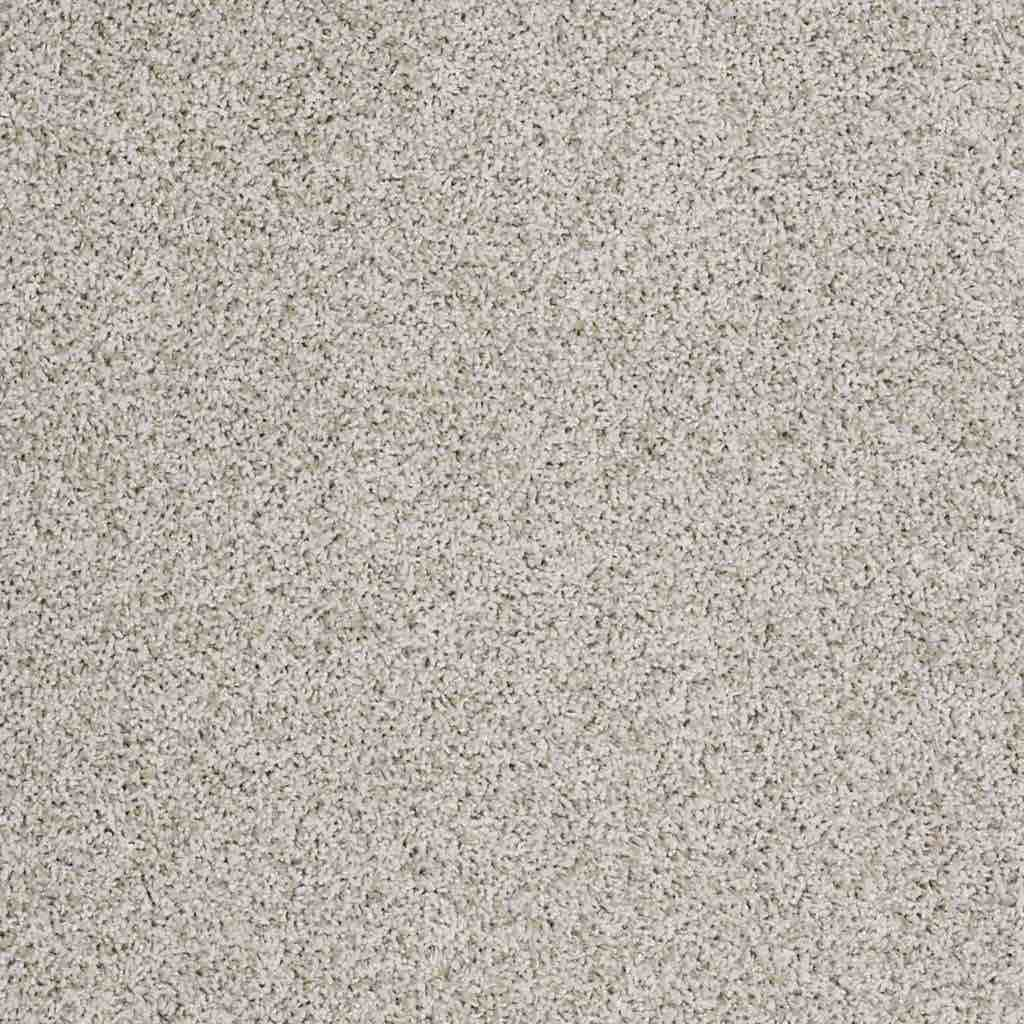 Anso Nylon Carpet From Shaw Thousands Pictures Of Home