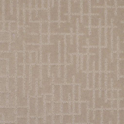 Shaw Floors - Robust Life - Orange County Carpet Installation Services