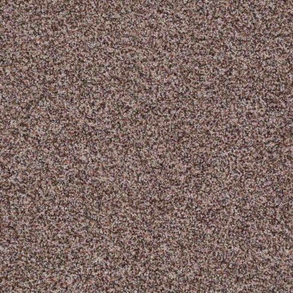 Treat Me Acorn - Orange County Carpet Installation Services = Shaw Floors