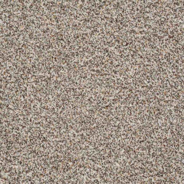Treat Me - Shaw Carpet Floors - Orange County Carpet Installation Company