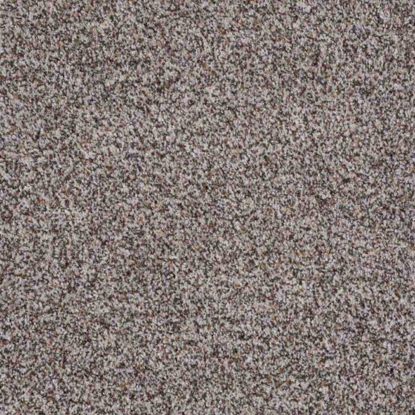 Treat Me Shaw Floors Orange County Carpet Installation