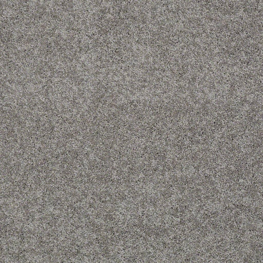 Shaw Floors My Inspiration Iii Fog Style No Ea561