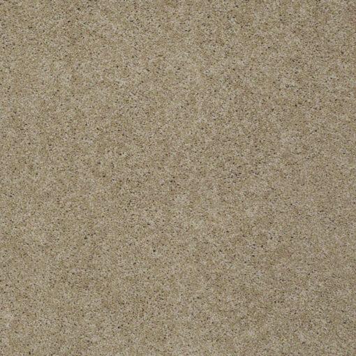 Shaw Floors | Shaw Flooring | Shaw Carpeting | Shaw Carpet Floors | Orange County Carpet Installation Services | Orange County Carpet Installation Company