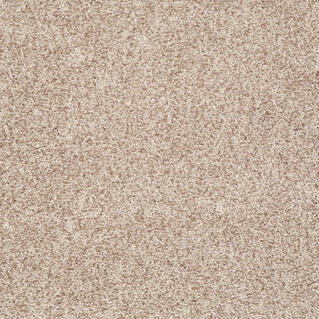 Shaw Floors Dazzle Me Texture Twinkle Style No E0702
